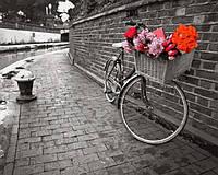 Картины по номерам 40×50 см. Велосипед любви Фотохудожник Ассаф Франк, фото 1