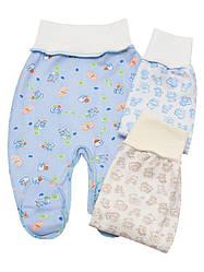 Ползунки ясельные для новорожденных 36 (56см), Мальчик