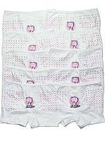 Набор детских трусов шортиков (10 шт.) (Белый с розовым)