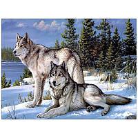Алмазная вышивка Волки пара 40*50, квадратные алмазы, полное заполнение