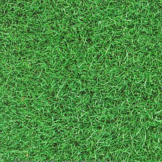 Виниловая Плитка LG Deco Tile DTL 2987 Трава Зеленая