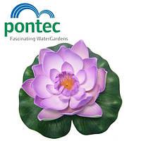 Плавающая лилия Pontec PondoLily, 1 шт