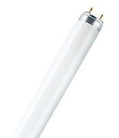 Лампы люминесцентные Т8
