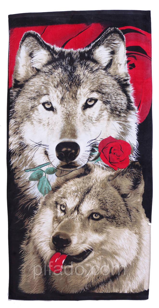 Пляжний рушник Вовк з трояндою (велюр-махра) 70х140. Код 1615-903