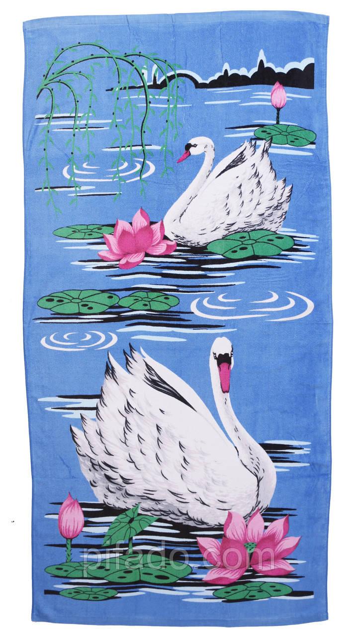 Пляжное полотенце Лебеди (велюр-махра) 70х140. Код 199