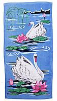 Пляжное полотенце Лебеди (велюр-махра) 70х140. Код 1615-199
