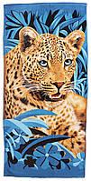 Пляжное полотенце Леопард (велюр-махра) 70х140. Код 1615-1318