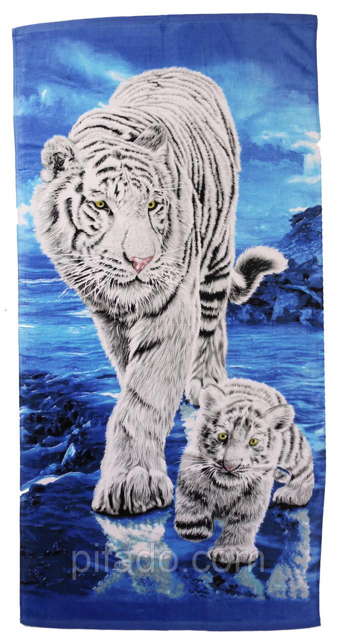 Пляжний рушник білий Тигр (велюр-махра) 70х140. Код 1615-1574