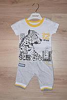 """Трикотажный  костюм с леопардом для мальчика 6-18 месяцев, """"Estella"""" Турция"""