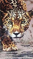 Полотенце пляжное махра-велюр 75х150 Леопард