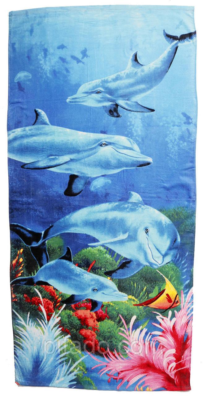 Пляжное полотенце (велюр) 70х140. Код 2243