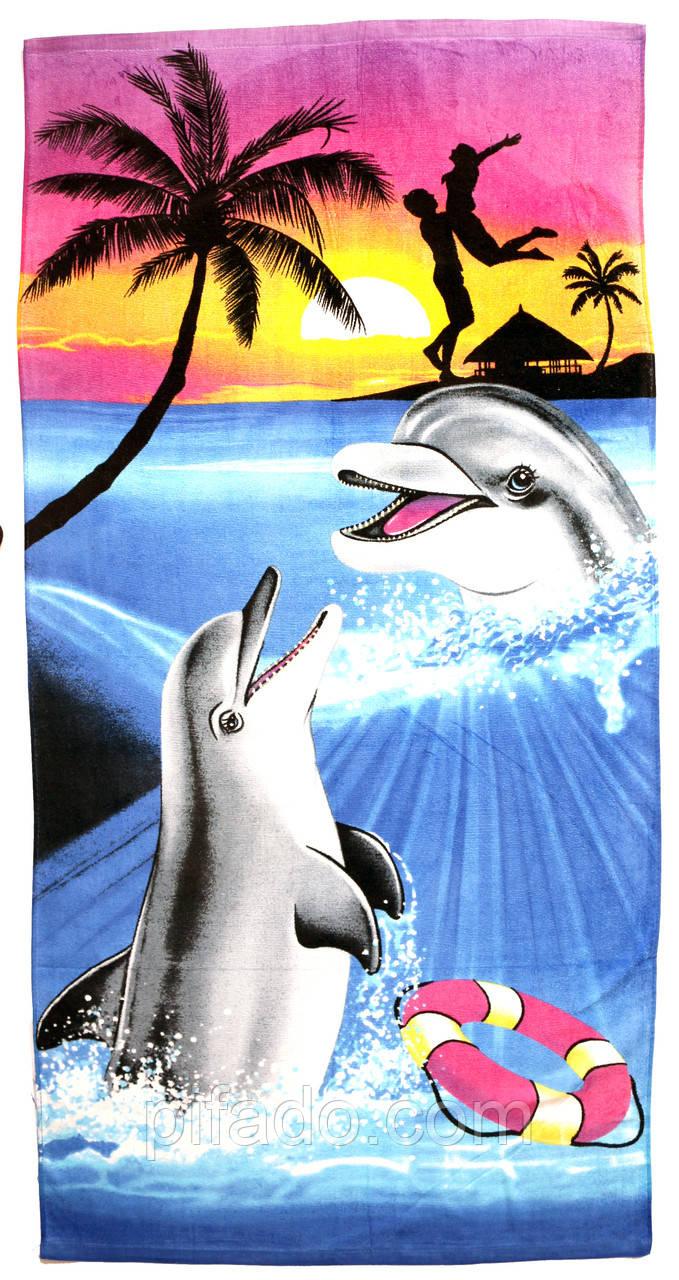 Пляжний рушник Дельфін (велюр-махра) 70х140. Код 1615-1773
