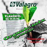 "Плантафол Plantafol 20.20.20 (5 кг) ТМ ""Valagro"" с хелатными микроэлементами, фото 3"