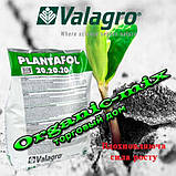 """Плантафол Plantafol 5.15.45 (1 кг) ТМ """"Valagro"""" смесь хелатов макро и микроэлементов с EDTA, фото 3"""
