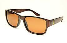 Очки Polo солнцезащитные (4061 кор)