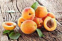 Ароматизатор Абрикос «Apricot» Baker Flavors
