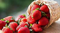 Ароматизатор Клубника «Strawberry» Baker Flavors