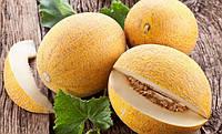 Ароматизатор Дыня «Melon» Дыня Baker Flavors