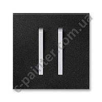 Центральная панель выключателя двойная ABB Neo Оникс/Титан 3559M-A00652 74