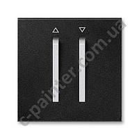 Центральная панель выключателя двойная для жалюзи ABB Neo Оникс / Титан 3559M-A00662 74