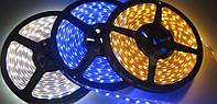 Светодиодная LED лента  SMD 3528    60 диодов  (Герметичная)