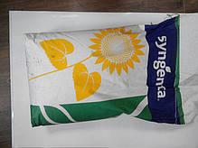 Семена подсолнечника НК Роки Syngenta, фото 2