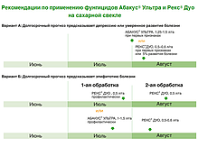 Фунгицид Рекс Дуо BASF, фото 3