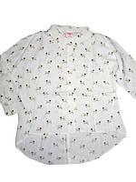 Рубашка нарядная для девочек Glo-story, размеры 98-128 арт. 4073