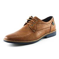 Туфли мужские Forra 16V062-B коричневые
