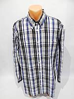 Мужская рубашка  длинным рукавом Bonita оригинал  027ДР р.54