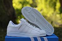 Женские кроссовки Adidas Superstar белые 2288