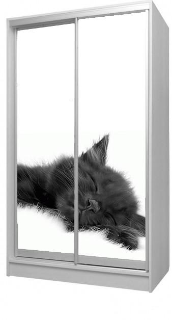 Шкаф - купе кот