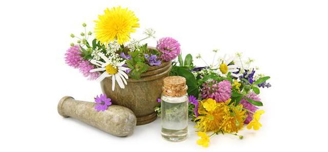 Лечебные травы оптом