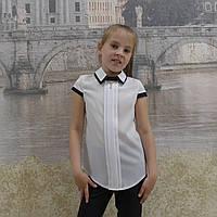 """Блузка для девочки""""Двойной воротник""""(белая с синей отделкой)короткий рукав"""