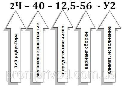 Условное обозначение червячного редуктора 2Ч-40