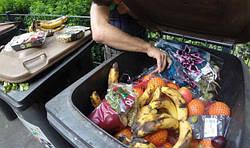 Скільки людина викидає їжі?