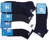 Носки мужские спортивные х/б с сеткой Adidas, Originals, 41-46 размер, короткие, ассорти, 654