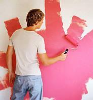 Краски для стен