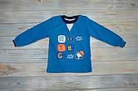 Кофточка загадка голубого цвета (68, 74, 80, 86 см ) - 74 см, Турция, Haknur, на мальчика, на ребенка, батник