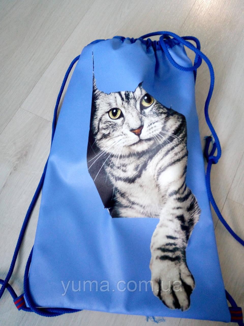 Рюкзак для сменной обуви на шнурках  Кот в синем №  3