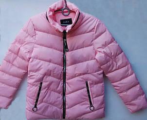 Красивая демисезонная женская приталенная куртка на синтепоне, фото 2