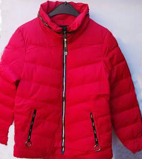 Красивая демисезонная женская приталенная куртка на синтепоне, фото 3