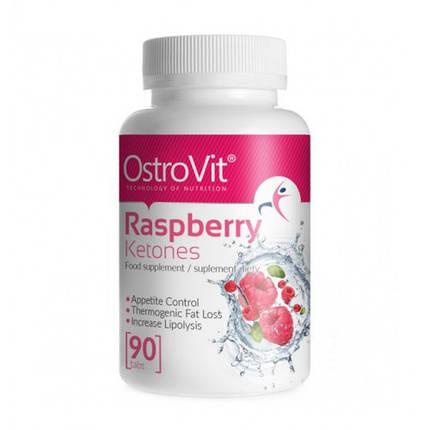 Raspberry Ketones OstroVit 90 tabs, фото 2
