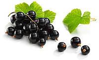 Ароматизатор Blackberry flavor (Mad Vaper) – Черная смородина