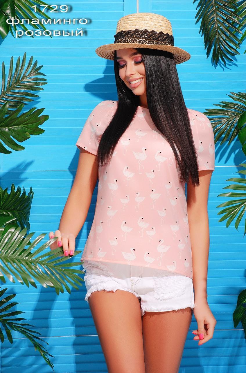 37f906c1c32 Летняя женская блузка фламинго. 280 грн. В наличииЛетняя женская блузка  фламинго. Купить