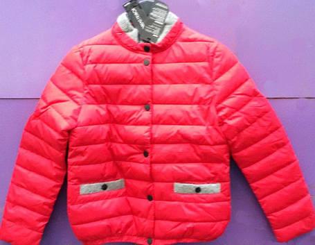 Демисезонная модная короткая женская куртка, фото 2
