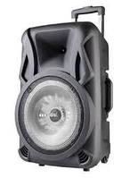 Аккумуляторная акустика USBFM 1010BT