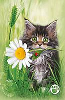 Подарочные пакеты Серый котик с ромашкой размер 25 х 39 см (6 шт./уп.)