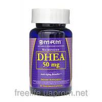 Повышение Тестостерона,DHEA 50 мг (90 капсул)