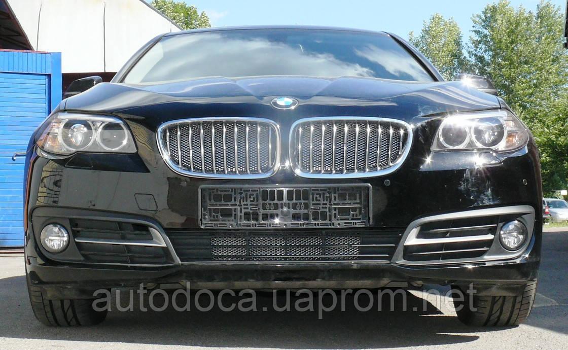 Декоративно-защитная сетка радиатора BMW 5 (F10) фальшрадиаторная решетка (ноздри), бампер